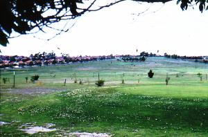 Hudson Park Strathfield., prior to redevelopment as golf course. Photograph 1960.