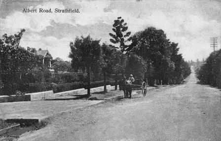 Albert Road Strathfield postcard c.1915