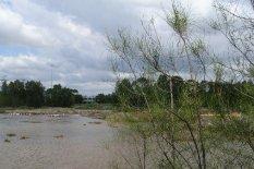 Mason Park Wetlands 9