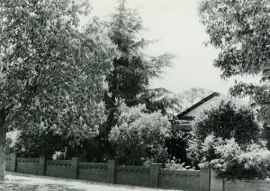 67 Redmyre Road Strathfield (1986)