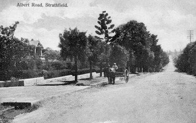 Albert Rd Strathfield c1910