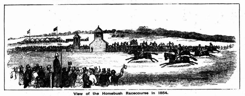 Town & Country Journal September 21 1895 illustration of Homebush Racecourse