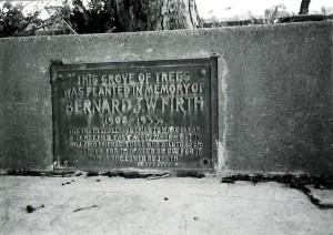 Bernard Firth Grove of Trees Hudson Park 1986