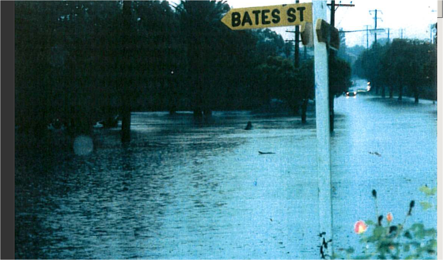 Flooding in Strathfield