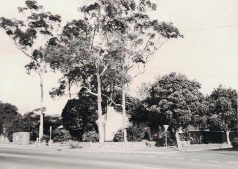 20 Arthur St Strathfield. Strathfield Council 1986