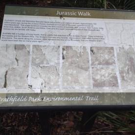 Strathfield Park Environmental Trail -Jurassic Walk