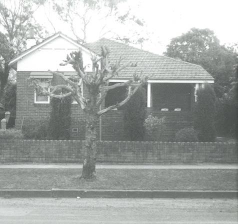 17 Meredith Street Homebush